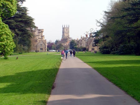 A view of Cirencester Park with Cirencester parish church in the background